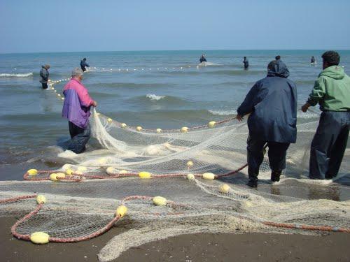 خمام - صید ماهی با قلاب بدون پروانه ممنوع است