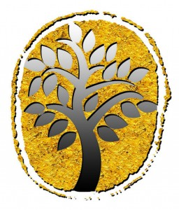 خمام - اعزام دانشآموز خمامی به جشنواره کشوری هنرهای تجسمی