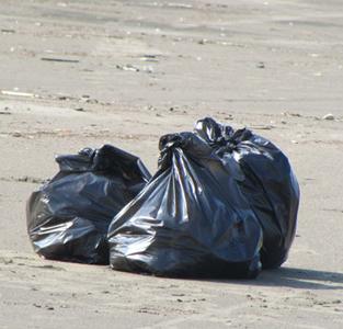 طرح پاکسازی ساحل جفرود توسط دانشجویان دانشگاه گیلان اجرا گردید