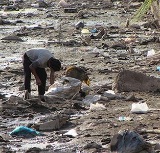 نگاهی به «زباله گردی» در خمام رود …