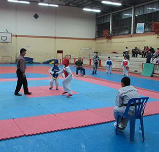 مسابقات تکواندوی نونهالان خمامی برگزار شد