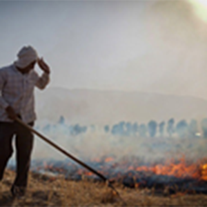 خمام - حبس یکساله در انتظار سوزانندگان کاه و کلش