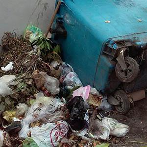 خمام - معضل رو به رشد زباله گردی / سرنگونی سطلهای زباله و مخاطرات بهداشتی
