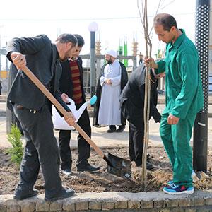 مراسم روز درختکاری در خمام برگزار شد