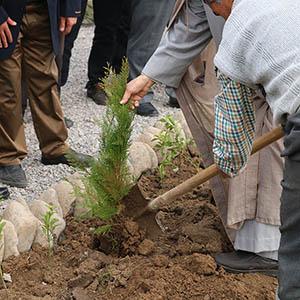 خمام - برگزاری مراسم روز درختکاری در مرکز بومگردشگری جیرسر باقرخاله