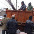 شهردار خمام : ۷۰۰ اصله نهال سیب خریداری شد / توزیع رایگان نهالها بین مردم