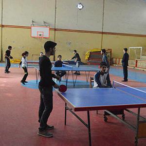 خمام - مسابقات پینگ پنگ در سالن تختی برگزار شد
