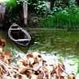 طبیعت روستای دهنهسر شیجان