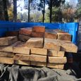 ۶۵ اصله چوب قاچاق در خمام کشف شد