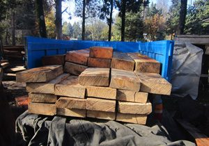 خمام - ۶۵ اصله چوب قاچاق در خمام کشف شد