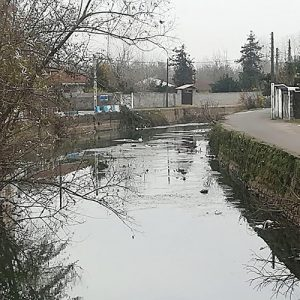 خمام - نفسهای رودخانهای که به شماره افتاده است