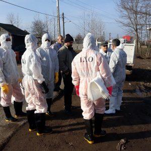 خمام - آمار ارائه شده از سوی اداره محیط زیست نادرست بوده و ۵۳۰ قطعه مرغ خانگی مبتلا به آنفلوانزا در مرزدشت معدوم شده است