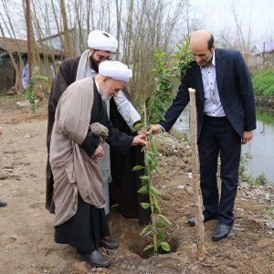 خمام - مراسم کاشت نهال در روز درختکاری برگزار شد