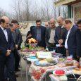 از برگزاری جشن نیکوکاری و جشنواره غذا تا ایجاد بازارچه خیریه در مدارس بخش خمام