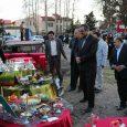 جشنواره هفتسین برتر برگزار شد