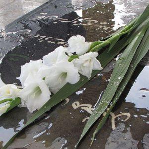 خمام - نثار گل به مزار معلمان شهید بخش خمام
