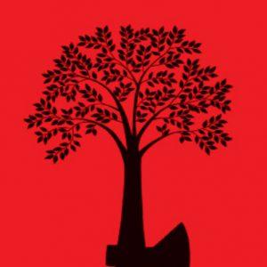 خمام - قطع یک درخت سالم، در شلوغی طرح شاخهزنی و قطع درختان پوسیده!