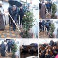 کاشت و توزیع ۱۵۰۰ اصله نهال در شهر خمام