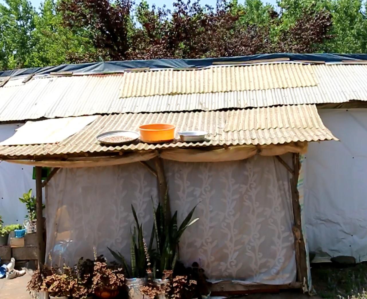 وضعیت ۱۵ ساله خانوادهای در کتکول دافچاه