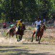 ماکان تقیخواه در مسابقات اسب سواری گیلان به مقام دوم رسید