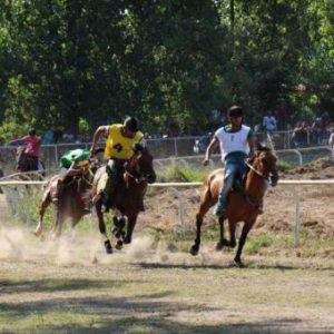 خمام - ماکان تقیخواه در مسابقات اسب سواری گیلان به مقام دوم رسید