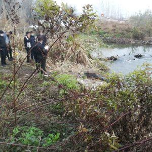 خمام - جسد مرد میانسال از شیجانرود بیرون کشیده شد