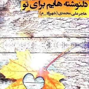 خمام - کتاب «دلنوشتههایم برای تو» از هاجر علیمحمدی