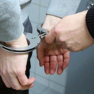 خمام - متهم پرونده کشتن یک قلاده سگ با اسلحه شکاری دستگیر شد