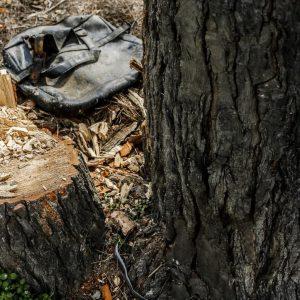 خمام - اداره کل منابع طبیعی و آبخیزداری گیلان ادعای ثبت ملی جنگل فتاتو را رد کرد